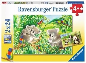 Puzles Koalas y pandas
