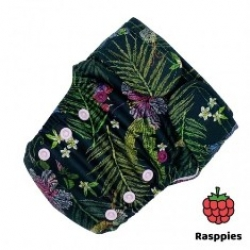 Rasppies rellenables